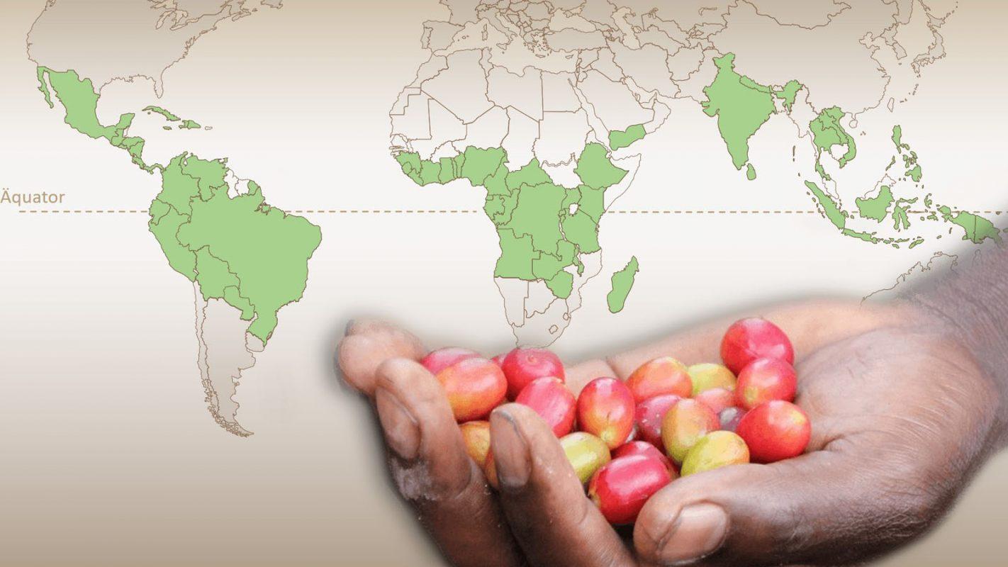 Weltkarte: Erzeugerländer sind farblich hervorgehoben. Hand eines Bauern mit Kaffeekirschen ragt in den Vordergrund